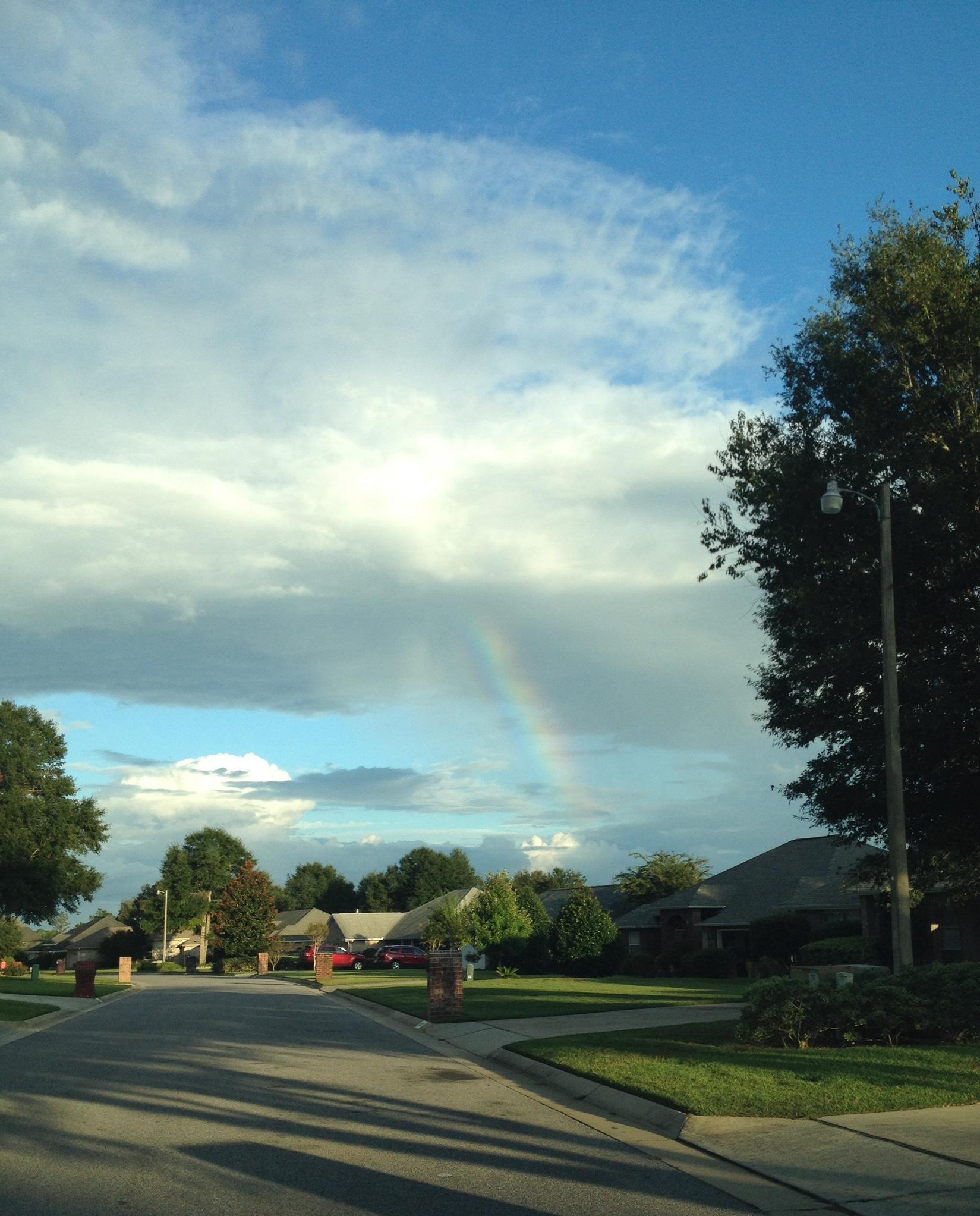 rainbow1jpg