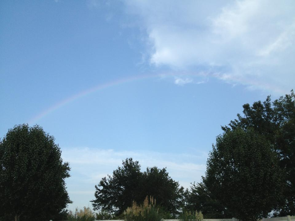 rainbow3jpg